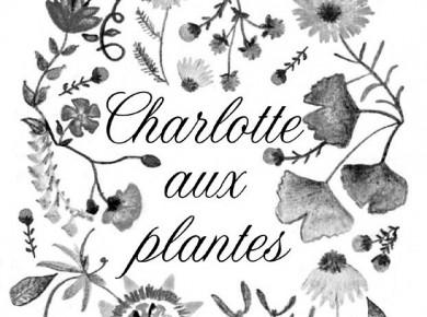 charlotte-grande